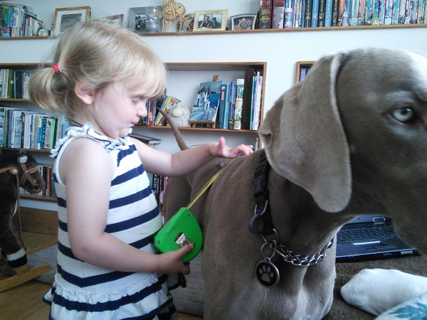 Dog sitter required for July-August 2016 West London location