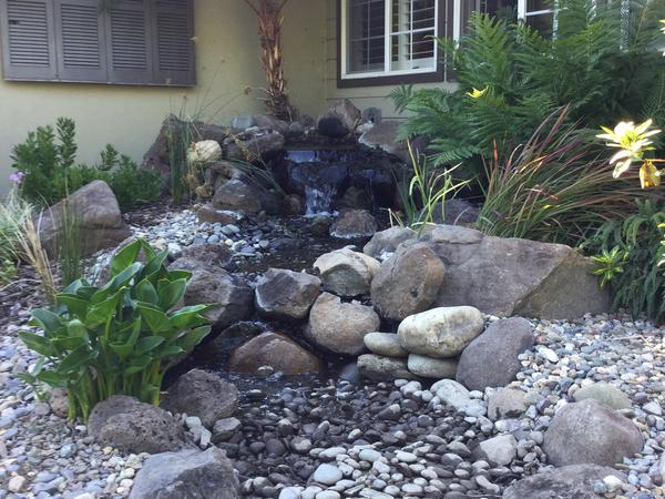 Housesitting assignment in Stockton, California, United States