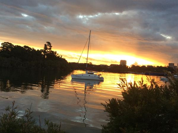 Housesitting assignment in Mortlake, New South Wales, Australia