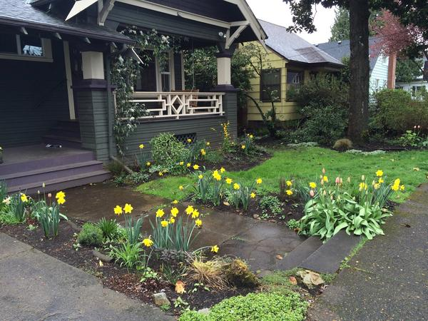 Classic SE Portland Bungalow with 2 cats and bunny