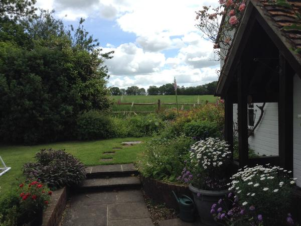 Housesitting in beautiful rural Hampshire countryside