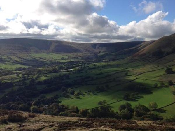 Cat sitter for 2 weeks in Sheffield - 5 minutes from the Peak District