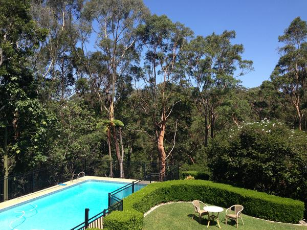 Housesitting assignment in Wahroonga, NSW, Australia