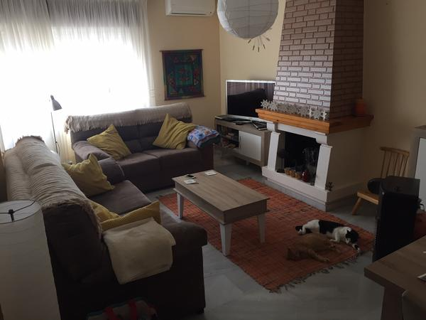 Housesitting assignment in Torre del Mar, Spain