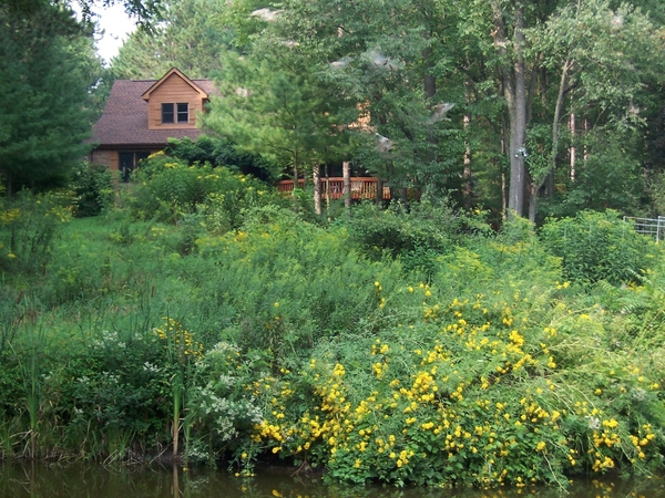 Housesitting assignment in Brighton, Michigan, United States