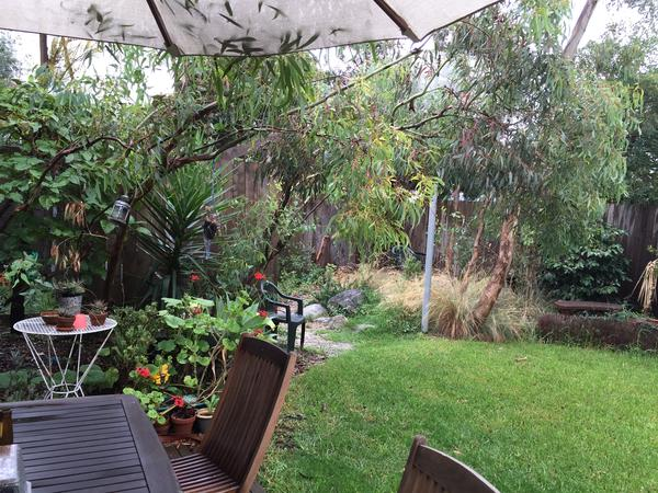 Housesitting assignment in Brunswick, Victoria, Australia