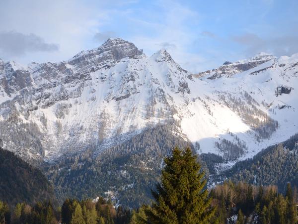 Housesitting assignment in Arveyes, Switzerland
