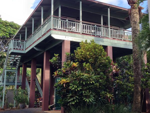 Housesitting assignment in Kīlauea, Hawaii, United States