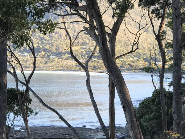 Housesitting assignment in Eaglehawk Neck, Tasmania, Australia