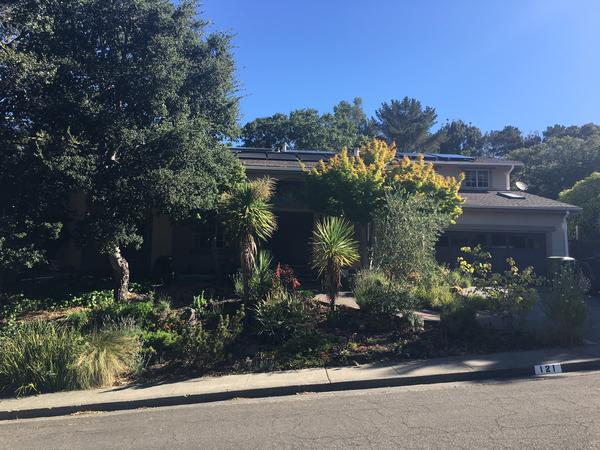 Housesitting assignment in Novato, California, United States
