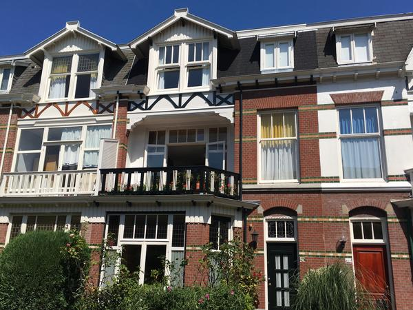 Housesitting assignment in The Hague, Netherlands