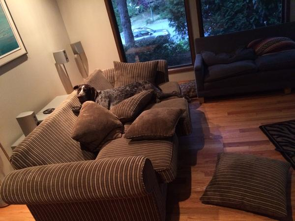 Housesitting assignment in Delta, British Columbia, Canada