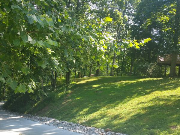 Housesitting assignment in Scott Depot, WV, United States