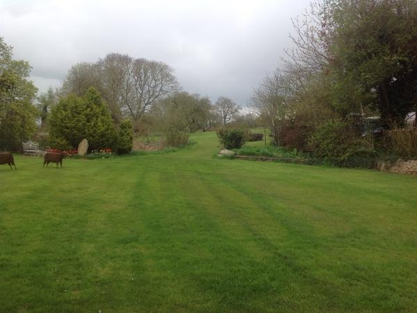 Housesitting assignment in Wanborough, United Kingdom