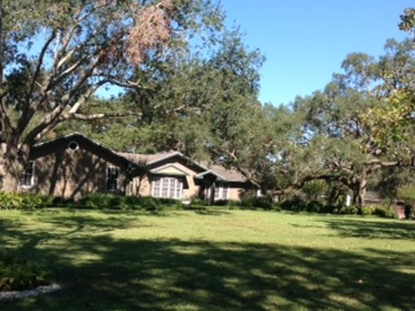 Housesitting assignment in Apopka, Florida, United States