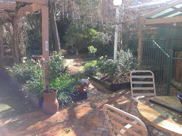 Housesitting assignment in Ringwood, VIC, Australia