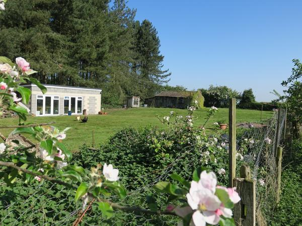 Forestry Cottage in Rural Lincolnshire