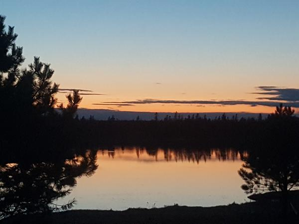 House/pet sitter required in PEI, Canada