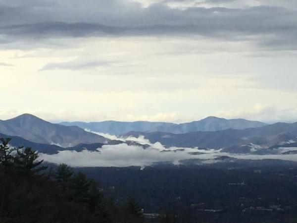 Housesitting assignment in Asheville, NC, United States
