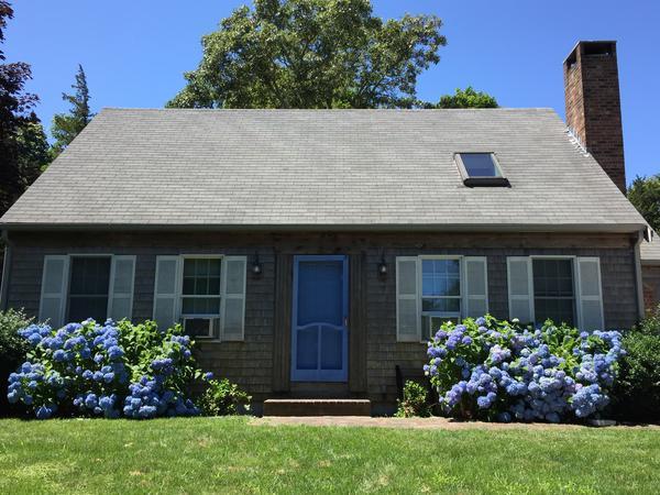 Housesitting assignment in Eastham, Massachusetts, United States