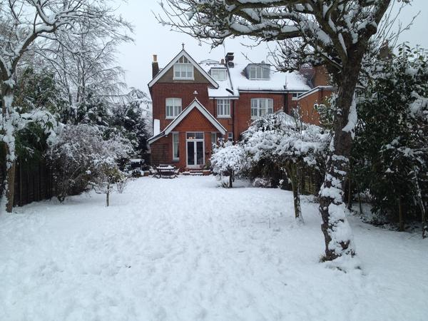 Looking for loving pet sitter for lovely Reigate Home in Surrey Hills