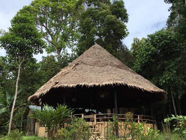 Housesitting assignment in Kuching, Malaysia