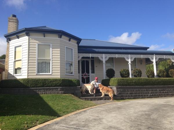 2 golden retrievers & a house.