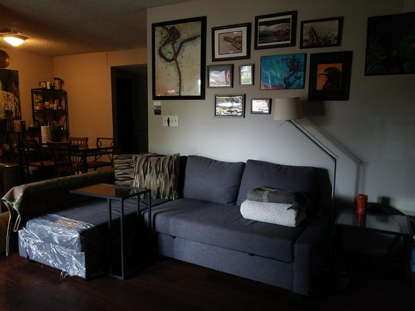 Cozy Zilker Apartment with Cat and Dog