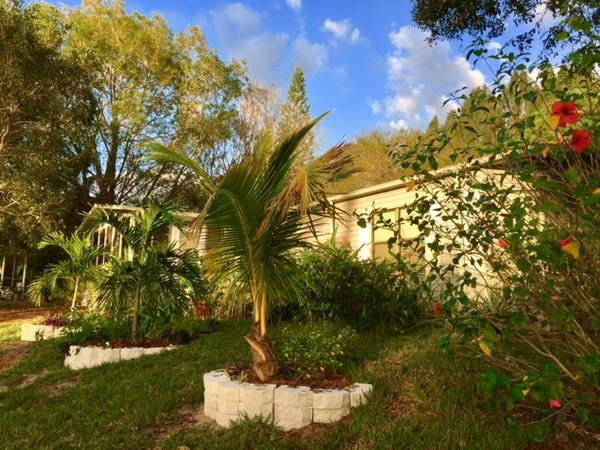 Housesitting assignment in North Fort Myers, Florida, United States