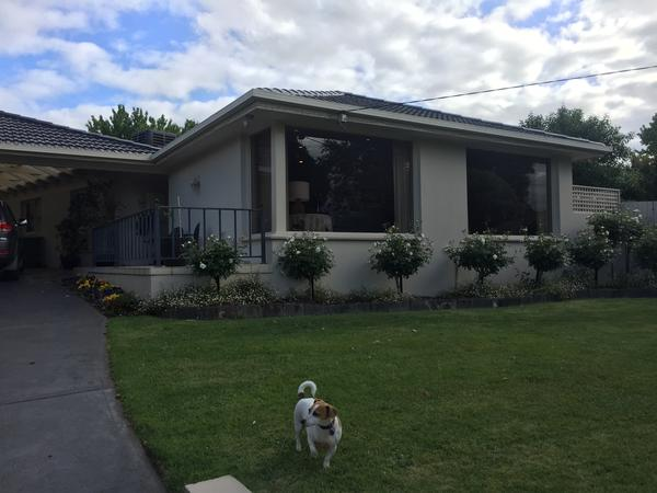 Housesitting assignment in Chirnside Park, Victoria, Australia