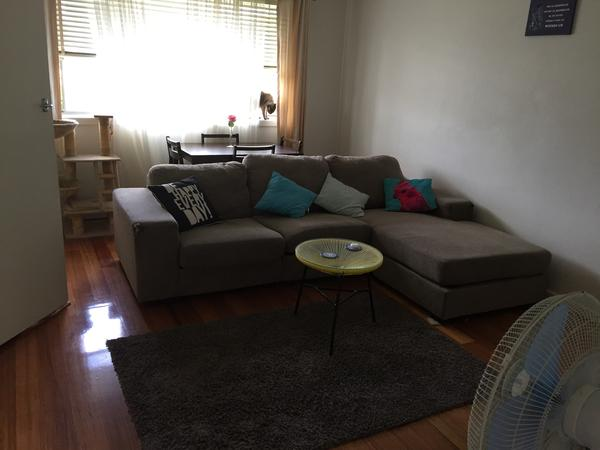 Housesitting assignment in Moorabbin, VIC, Australia