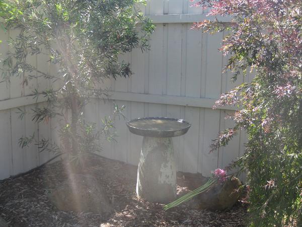 Housesitting assignment in Laverton, Victoria, Australia