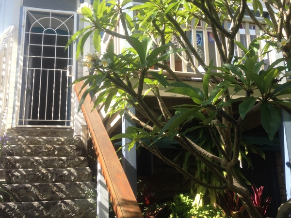 Housesitting assignment in Manly, New South Wales, Australia