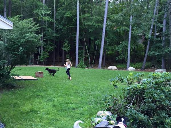Housesitting assignment in Concord, MA, United States