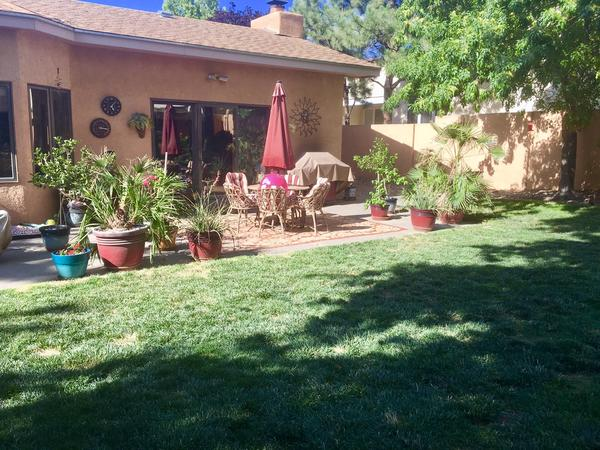 Housesitting assignment in Albuquerque, NM, United States