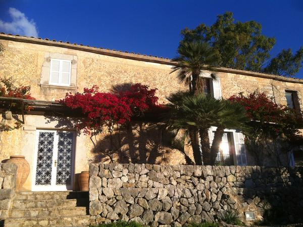 Housesitting assignment in Puigpunyent, Spain