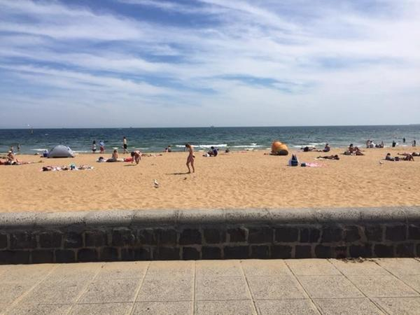 Housesitting assignment in Altona North, Victoria, Australia