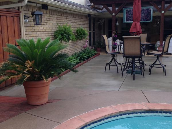 Housesitting assignment in Garland, TX, United States