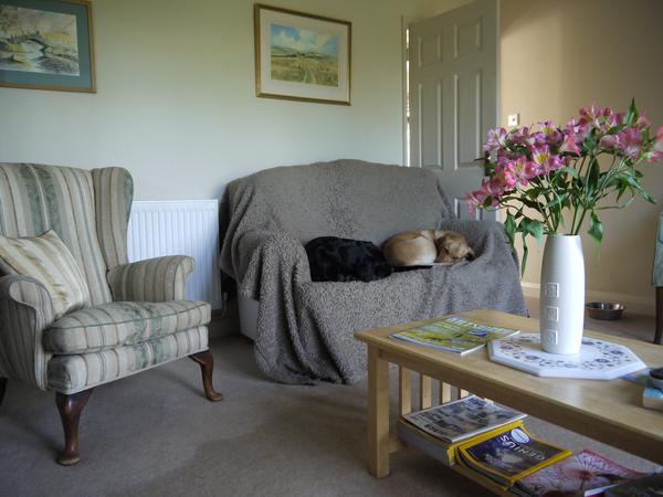 Housesitting assignment in Marlborough, United Kingdom