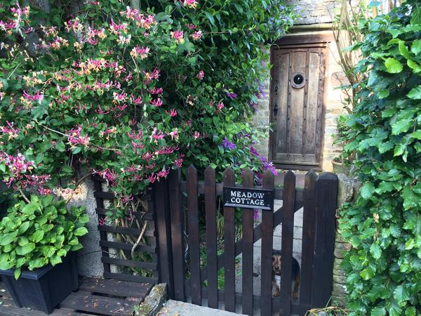 Beautiful Cotswold cottage, in tiny hamlet, with a dog & cat