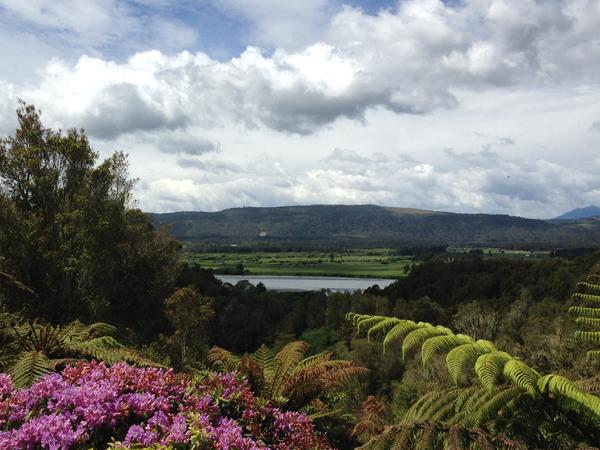 Housesitting assignment in Hokitika, New Zealand