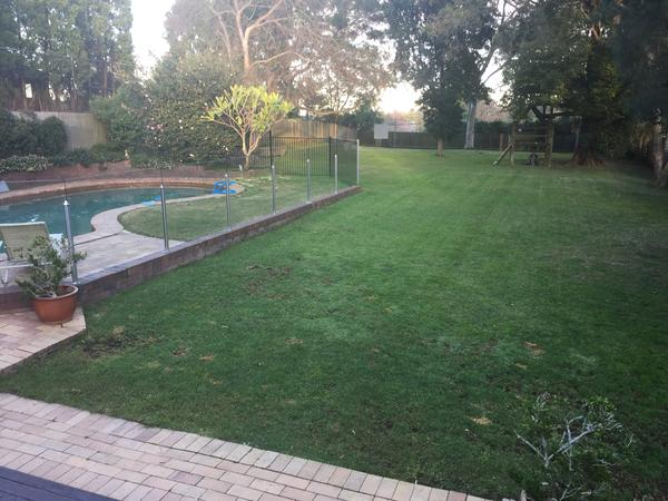 Housesitting assignment in Beecroft, New South Wales, Australia