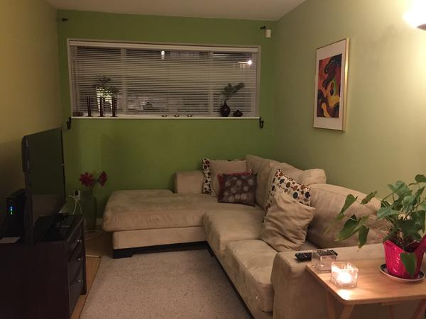 Pet sit in a great place near EVERYTHING with 2 big personalities for company!