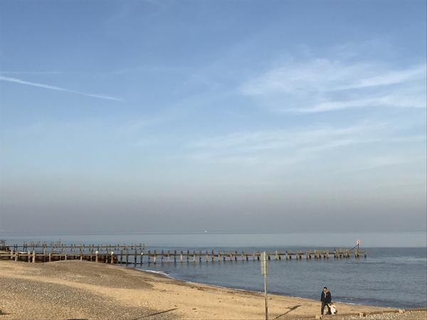 Housesitting assignment in Lowestoft, United Kingdom