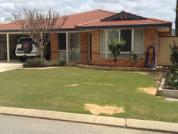 Housesitting assignment in Seville Grove, Western Australia, Australia