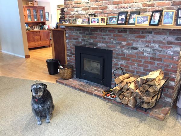 Housesitting assignment in Boxford, Massachusetts, United States