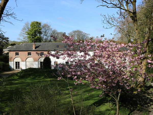 House sitter wanted 8th-22nd May 2017
