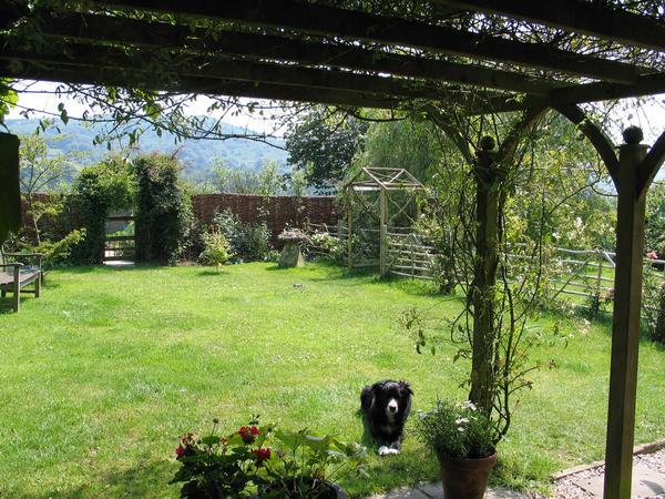 Housesitting assignment in Moretonhampstead, United Kingdom