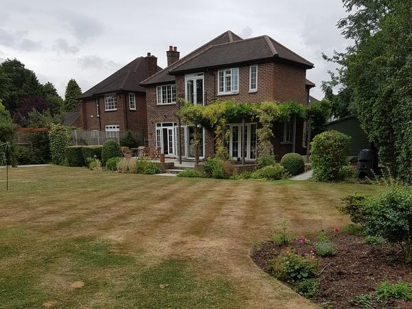 Housesitting assignment in New Malden, United Kingdom