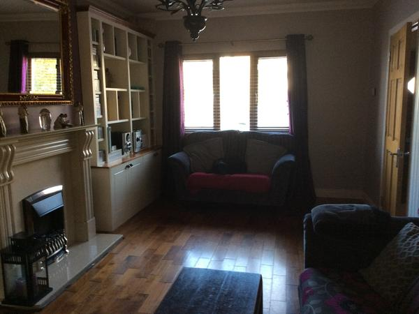 Housesitting assignment in Droichead Nua, Ireland